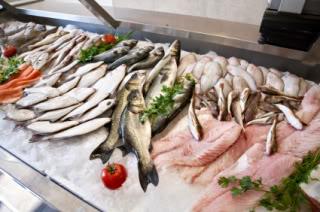 Fish market – Bronx 주매상 28k